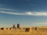 Derelict Grain Elevators Stand in the Prairies