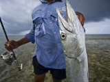 Fisherman Holds Out a Barracuda
