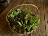 Basket of Organic Greens Sits on a Wooden Table