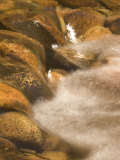Close-up of Water Rushing over Rocks in a Stream