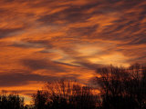 Dramatic Winter Sunset with Orange Clouds and Silhouetted Tree Line
