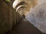 Vaulted Corridor in Hadrian's Villa
