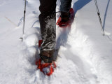 Legs of a Snowshoeing Adventurer