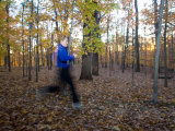Woman Runs on a Forest Trail in the Fall