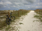 Path Leads to the Beach at St George's Island  Florida