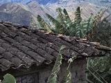 Tile Roof in Vilcabamba  Ecuador