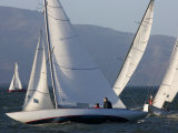 Sailboats Race in San Francisco Bay