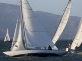 Sailboats Race in San Francisco Bay