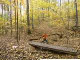Woman Trail Running Through Fall Foliage