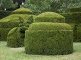 Topiary Garden at Longwood Gardens