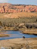 Desert Scene in Utah