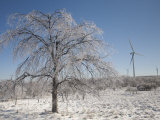 Wind Turbines in Winter after an Ice Storm