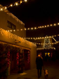 Woman Walks a Dog and Admires the Holiday Lights in Santa Fe