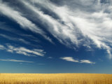 Wide Open Dramatic Prairie