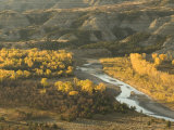 Fall Foliage Near the Little Missouri River in North Dakota