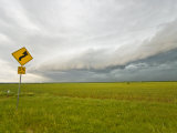 Roll Cloud Approaching a Green Wheat Field in Texas