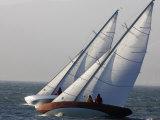 Sailboats Race Upwind in San Francisco Bay