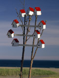 Group of Birdhouses on a Small Tree