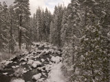 Winter Scene Looking Down the South Fork of the Stanislaus River