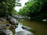 Landscape Image of Mossman River  Queensland  Australia