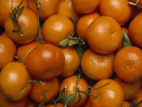 Close View of a Pile of Tangerines