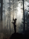 Firefighter Spraying Water Up into Trees in a Forest Fire