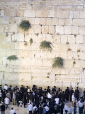 High Angle View of Jewish Men Praying at the Western Wall