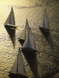 Sunlight on the Water and Sailboats