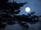 Moonrise over Matsushima's Pine Clad Islands