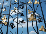 Gilded Wrought Iron Gate at Powerscourt House and Gardens in Ireland