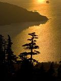 Sunlight Near Harbor Mountain