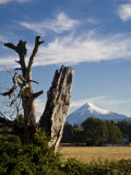 Farms and Mountains Along Puyehue National Park