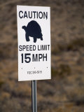 15 Mph Speed Limit Sign with a Turtle Silhouette