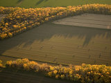 Fields and Fall Foliage Near the Missouri River in Early Morning