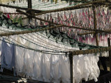 Freshly Clean  Hand Laundered Clothing Hangs to Dry