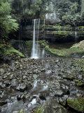 Russell Falls Cascade Through a Cool Temperate Rainforest