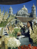 Woman Sells Flowers in Plaza Near Our Lady of Guadalupe Church