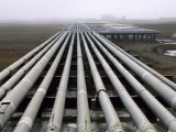 Trans-Alaska Pipelines at an Oil Field in Alaska's North Slope