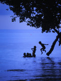 Children Playing  Jumping from a Tree into Water