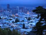 View of San Francisco from Buena Vista Park