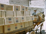 Man and Mule Cart Transport Boxes of Food Aid from United States