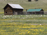 Log Cabin on the High Country Ranch on the Continental Divide