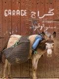 "Mule Parked in Front of a Sign That Reads ""Garage"""