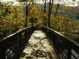 Footbridge over Waterway in Autumn Hued Woods in a Mountain Valley