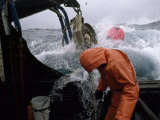 Fisherman Tending Trap Lines in High Seas Aboard a Fishing Boat