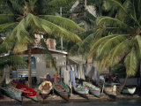 Small Fishing Village and Boats under Palm Trees on the Shore