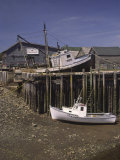 Low Tide at Halls Harbor in the Bay of Fundy