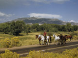 Rancher Leads His Horses on Country Road  Mountains Line Horizon