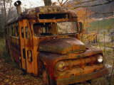 Old Rusting School Bus Sitting Among the Trees