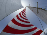 Looking Up into the Sails of a Sailboat